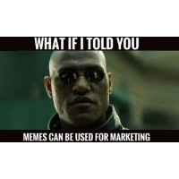 MEME Marketing - Social Media #Viral Traffic & Leads Generation